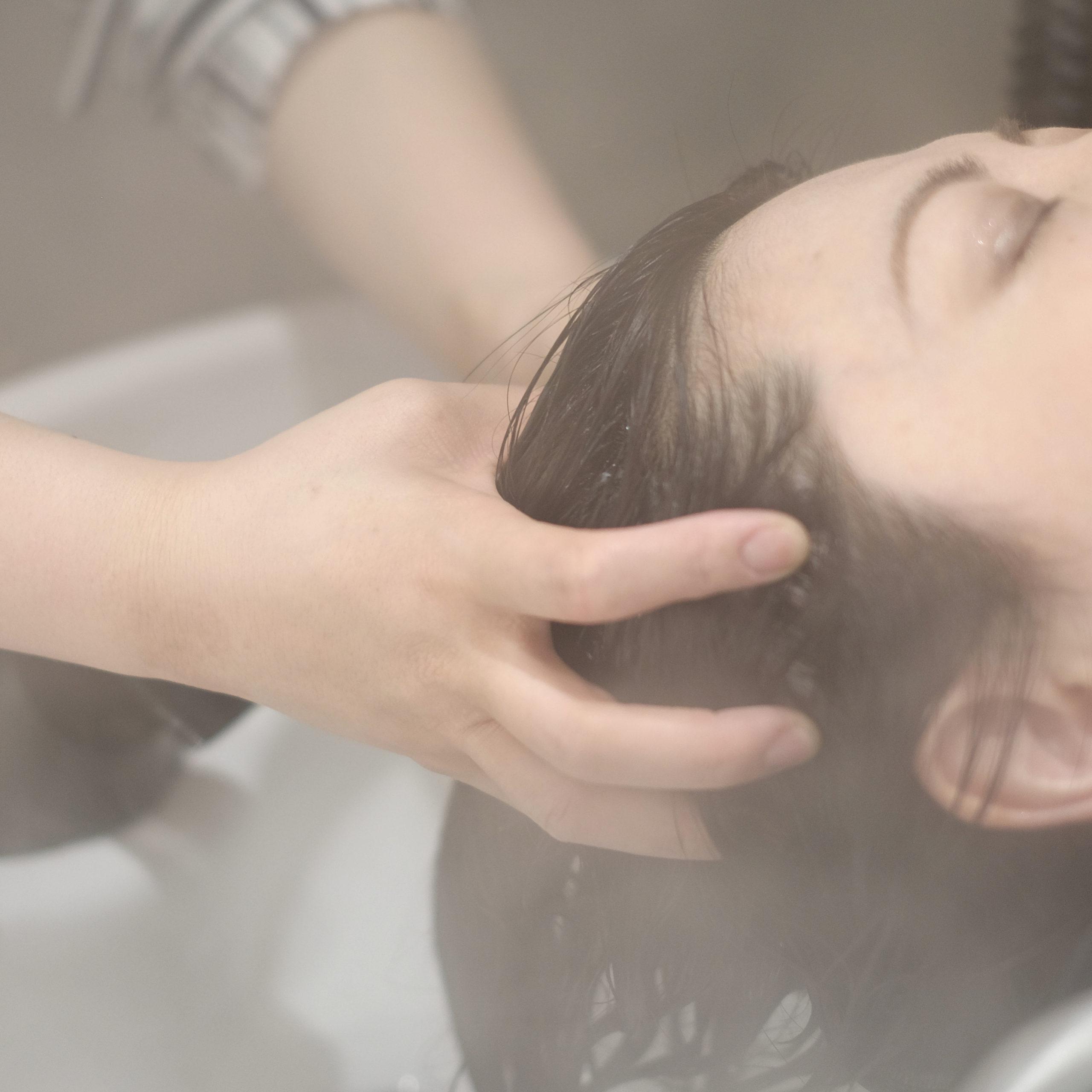 台風頭痛情報 パートナー2